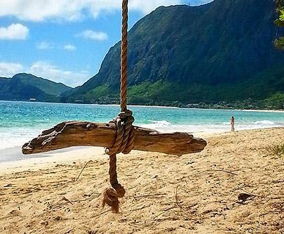 Hawaiian Artists